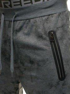 Spodnie męskie dresowe szare Denley W1339
